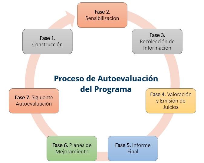 Fases del proceso de autoevaluación