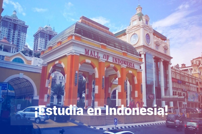 Estudiar en Asia
