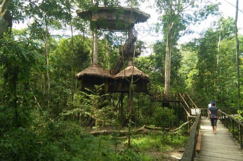 grancolombianos-en-el-amazonas