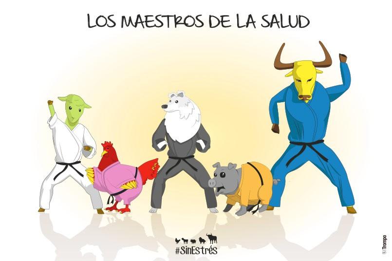 Salud 2016
