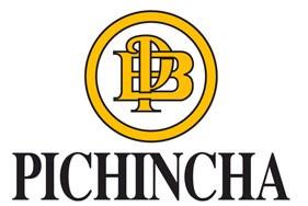 Apoyo financiero - Pichincha